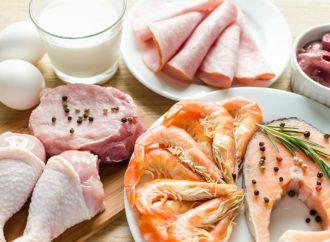 5 powodów, dla których warto jeść białko!